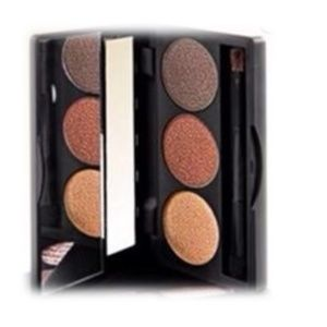 beauticontrol Makeup - beauticontrol intense mineral shadow trio